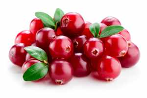 Cranberry_Fo