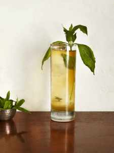 Singleton green tea and thai basil_767x1024